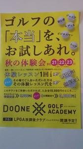 DSC_2546.jpg